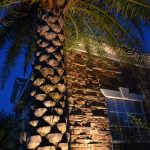 Side view of home and palm tree with lighting