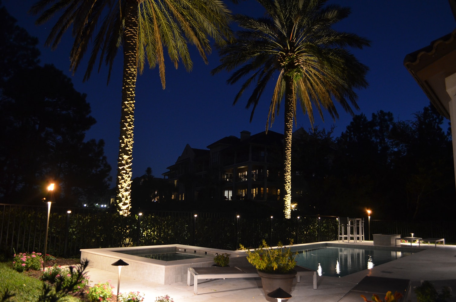 Outdoor lights around the pool and trees
